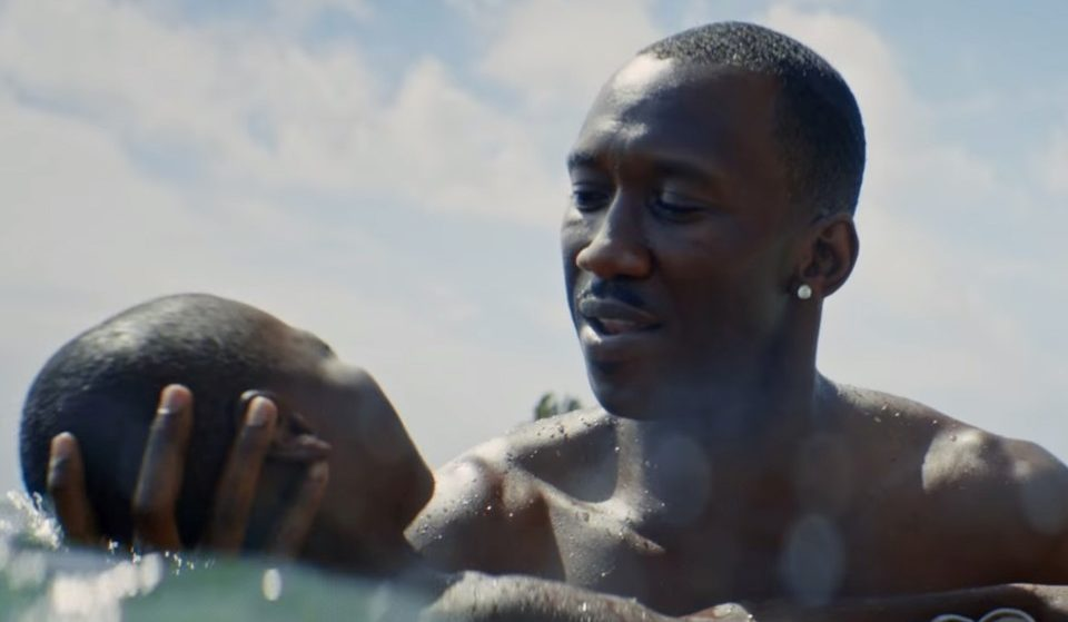 The Empathy Machine: Why Moonlight Isn't Universal and That's a Good Thing